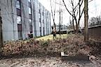 Gartenbauamt-beim-Fruehjahrsputz-im-Studentenwohnheim