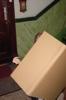 Familiäre Aufbauhilfe: jeder packt an, auch die Herren Cousins bitte