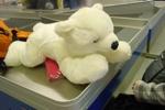 Ein Plüschtier Eisbär namens Norou