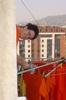 großer Putztag in unserer spanischen Wohngemeinschaft in Oviedo: SrNaranja beim Wäscheaufhängen
